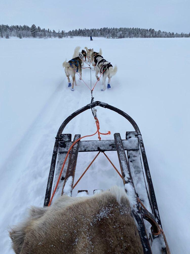 Mirja and Simo´s favorite picture from Lapland: what an adventure!